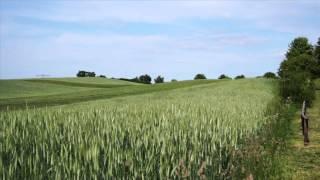 Mike Kilian - LASS UNS LEBEN - Offizielles Video
