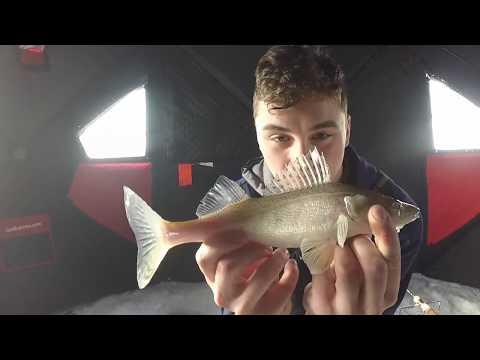 Lockport Family Fishing Day