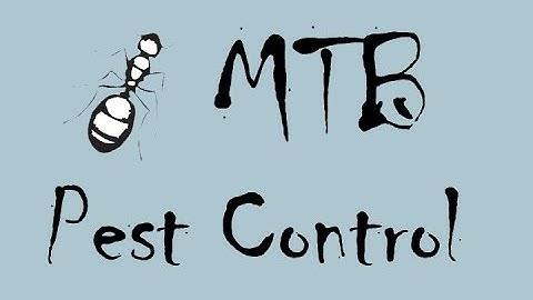 Pest Control Baltimore and Maryland Exterminators