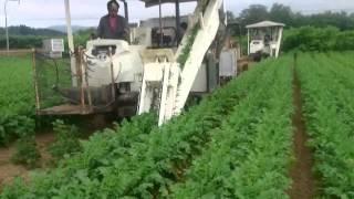 農業生産法人サンファーム 2015版PV