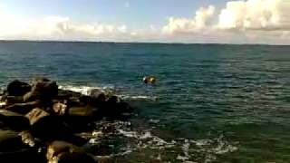 Пляж Вардане издали... / Sochi(Пляж Вардане издали....... http://vardane-sochi.ucoz.ru/ Сочи - любимый город !!! Фото и видео смотрите на сайте. Спасибо !, 2010-10-24T14:46:42.000Z)