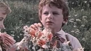 видео Изложение: Короленко: Слепой музыкант