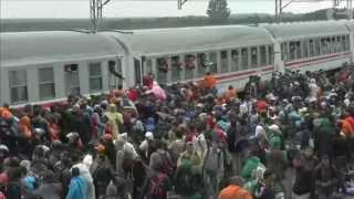 تزاحم اللاجئين للصعود للقطار في كرواتيا 20-9-2015