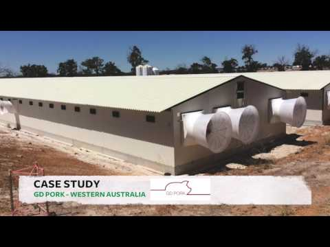 Turnkey Solutions for the Pig and Poultry Sector