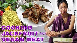 Cooked Jackfruit Taste Like Meat?