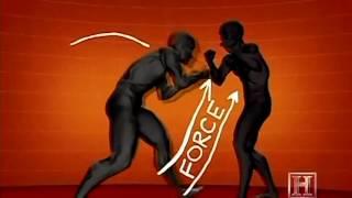 Обучение правильные удары ногами руками комбинации Muay Thai, Ninjutsu & Silat