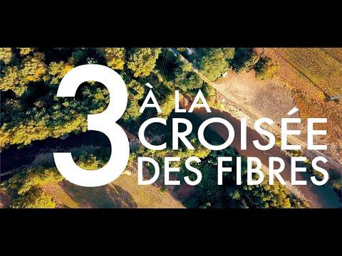 TRICOLOR Épisode 3 : À la croisée des fibres