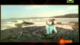 Download Hindi Video Songs - Maurya   Usiraguve