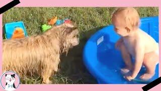 Смешное видео вызов Забавный ребенок играет в воде с собакой героем