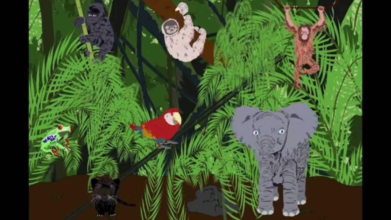 Endangered Animalsendangered Animals Video For Children -5037