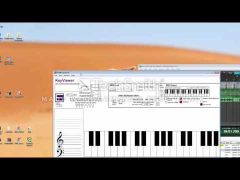 Module 7 Project, Harmonic Harmony