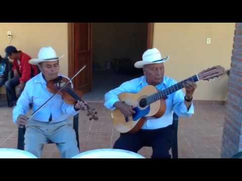 Chilenas de mixtepec violín y guitarra