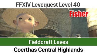 Ffxiv grand company leves level 35 coerthas central highlands a