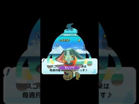 Youtubeモレゾウページ1 モレゾウのまとめサイト Matomedia