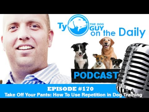 Episode #170 - Take Off Your Pants: How To Use Repetition in Dog Training - Utah Dog Training