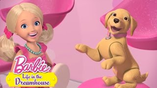 Эпизод 56: Собачье дело | Barbie