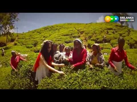 Holidays in Sri Lanka  Promotion Video Credit   High Def Films   www srilankatravelmap com