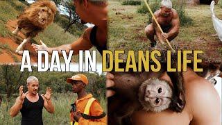 A day in Deans life  Dean Schneider