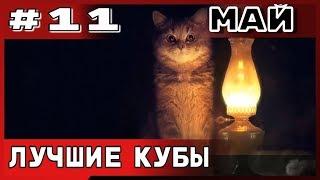 Большая подборка приколов COUB за май №11 2019 приколы2019