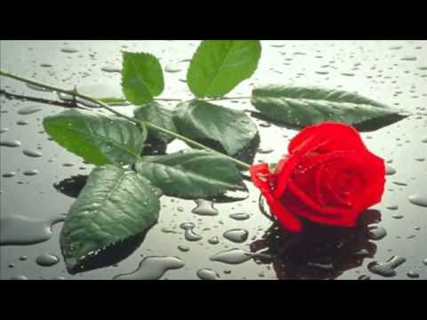 Bon Jovi - Bed Of Roses ( Sub. Español )