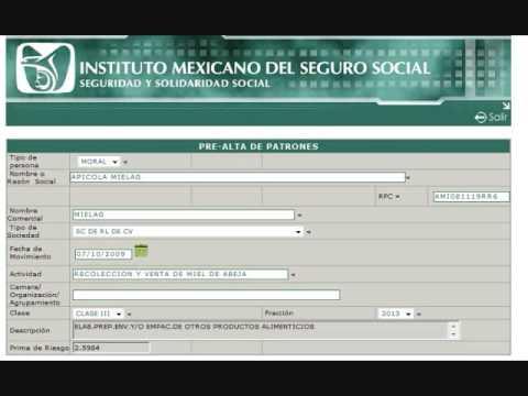 como descargar documentos en pdf de internet