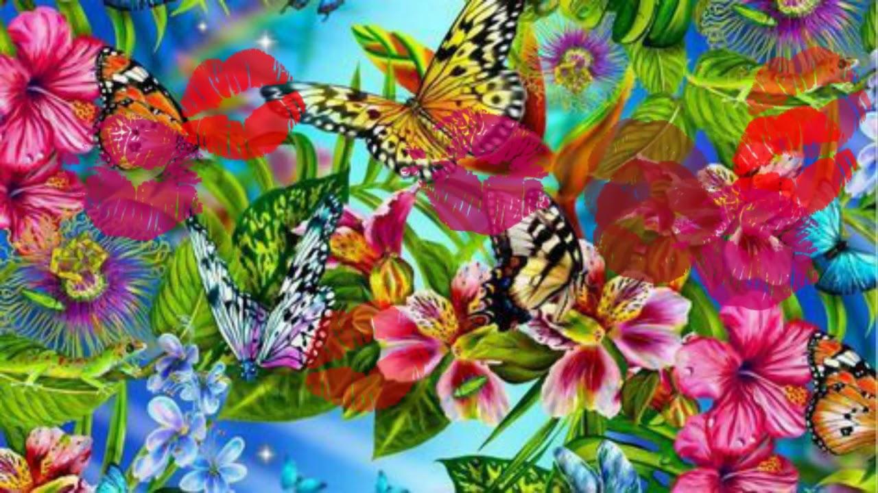 Buona Domenica Con Fiori E Farfalle