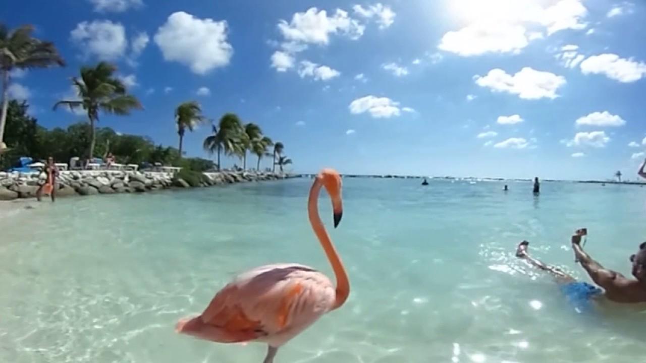 b8810ae9bda8 Renaissance Private Island e a praia dos flamingos em Aruba - Viagens  Possíveis