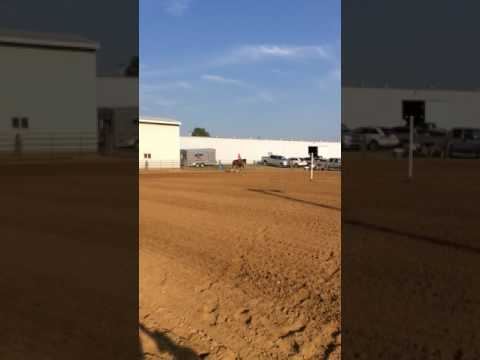 July 23, 2017 - Monroe County Fairgrounds, Waterloo IL Fair - Jocelyn & Hobo Pole Bending Race