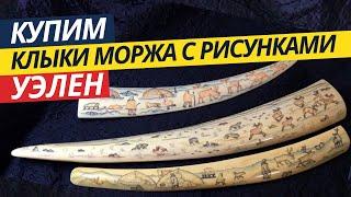 Клыки моржа с рисунками Уэлен | Обзор | Особенности | История (2019)