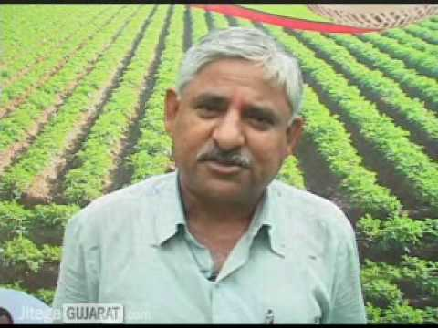 Gujarat farmers to go hi-tech after their visit to Israel