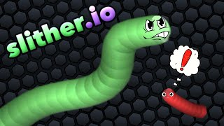 """THE ULTIMATE SNAKE TRAINING!"" 