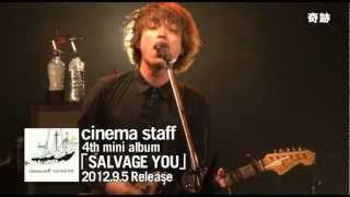 cinema staff - salvage me