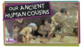 Our Ancient Human Cousins!