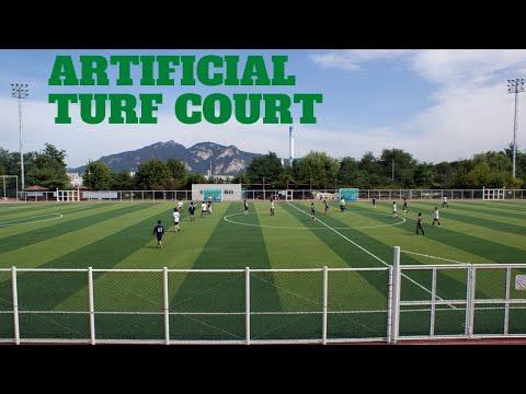 Artificial Turf Court Business Plan