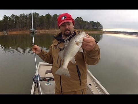 Prespawn bass fishing youtube for Youtube bass fishing