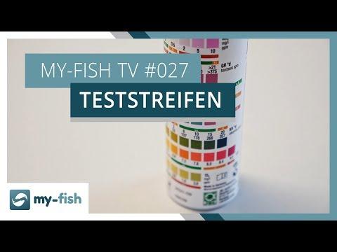 Mit Teststreifen schnell die wichtigsten Wasserwerte messen | my-fish TV