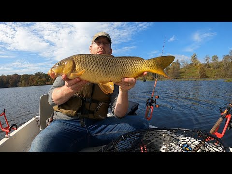 How To Catch Carp From A Boat - Fall Carp Fishing Tips And Tricks