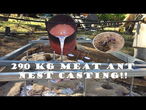 290 kg (640 lb) Aluminium Casting of a Meat Ant Nest - Iridomyrmex purpureus - Armidale 2016/10/18