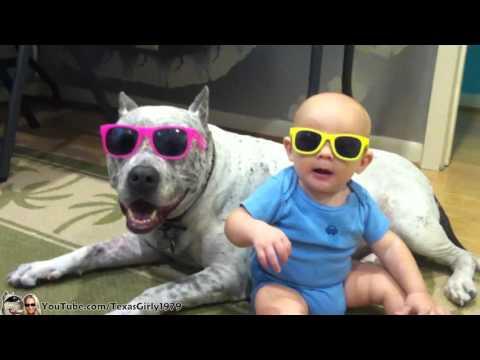 Baby and #PitBull Sharky with #Sunglasses I TexasGirly1979