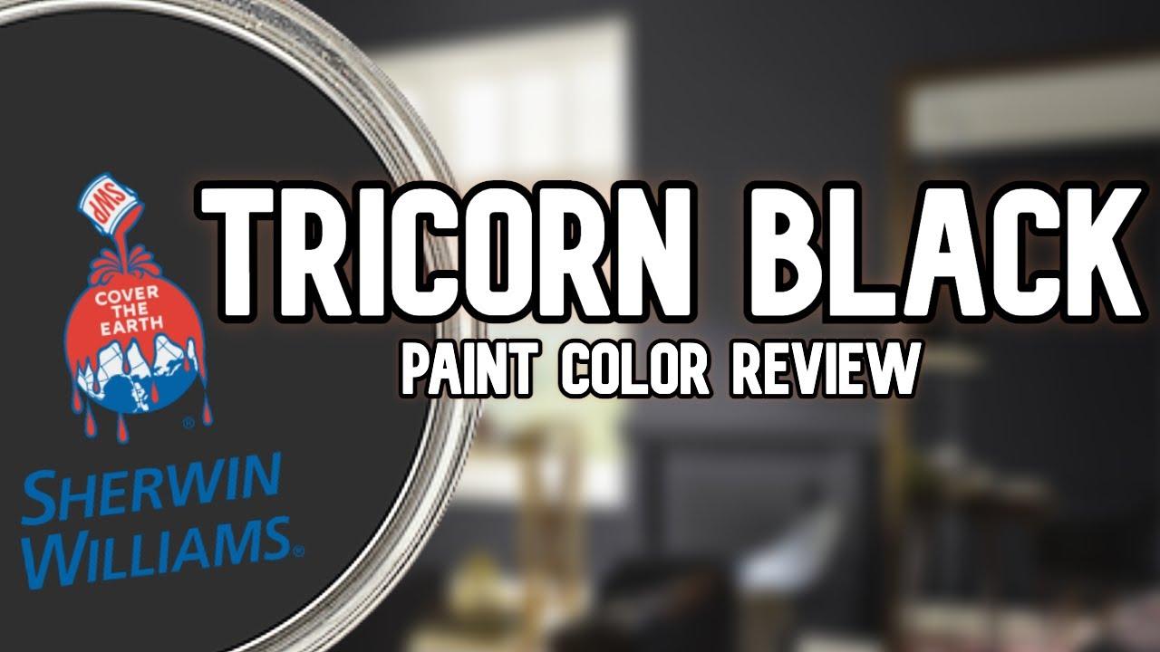 MY FAVORITE BLACK PAINT COLOR | Sherwin Williams Tricorn Black