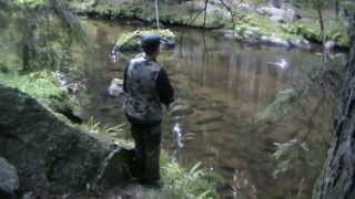 Atak pstrąga potokowego na wobler - Trout is attacking the lure, crazy trout - Trout Fishing