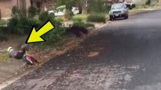 Mali dječak je pao s bicikla: Kada vidite ko mu dolazi u POMOĆ, ostat ćete bez riječi ! thumbnail