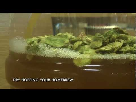 DRY HOPPING YOUR HOMEBREW