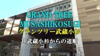 【アクセス】GRAND TREE MUSASHIKOSUGI グランツリー武蔵小杉