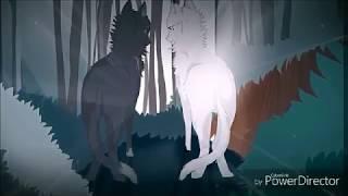 Коты Воители - cradles •клип•