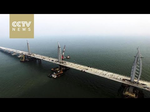 World's longest cross-sea bridge connects major south China ports