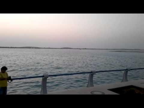 Coast Of Abu Dhabi