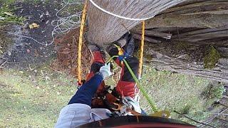 木登り器(4本爪)を装着したままで ロープを登ってみました。 あんまり...