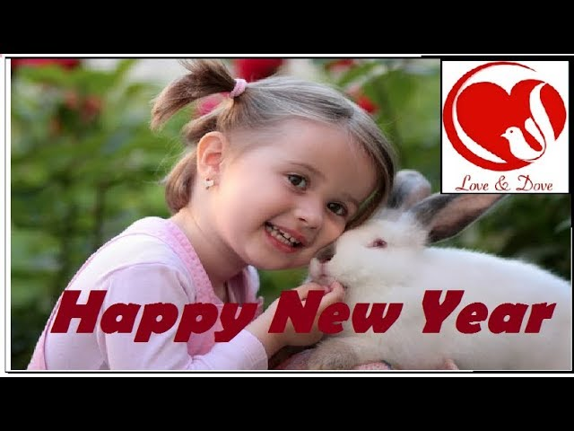 New year video | New year greetings | new year status |  न्यु इअर |
