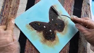 Как написать картину маслом!Видео мастер-класс по живописи! Рисуем бабочку маслом!